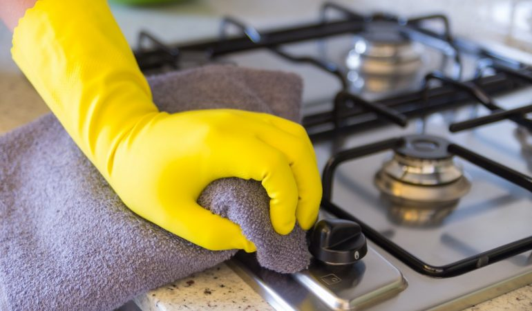 5 Effective Home Remedies To Protect Your Kitchen From Pests