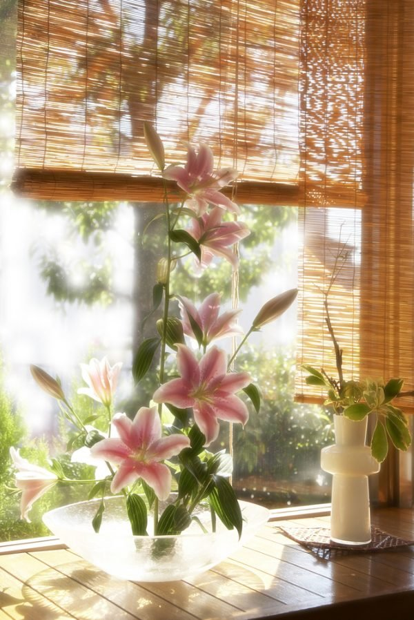 bamboo blinds for window treatments