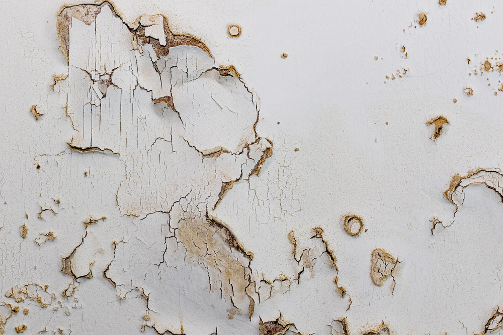 wall treatment for decay