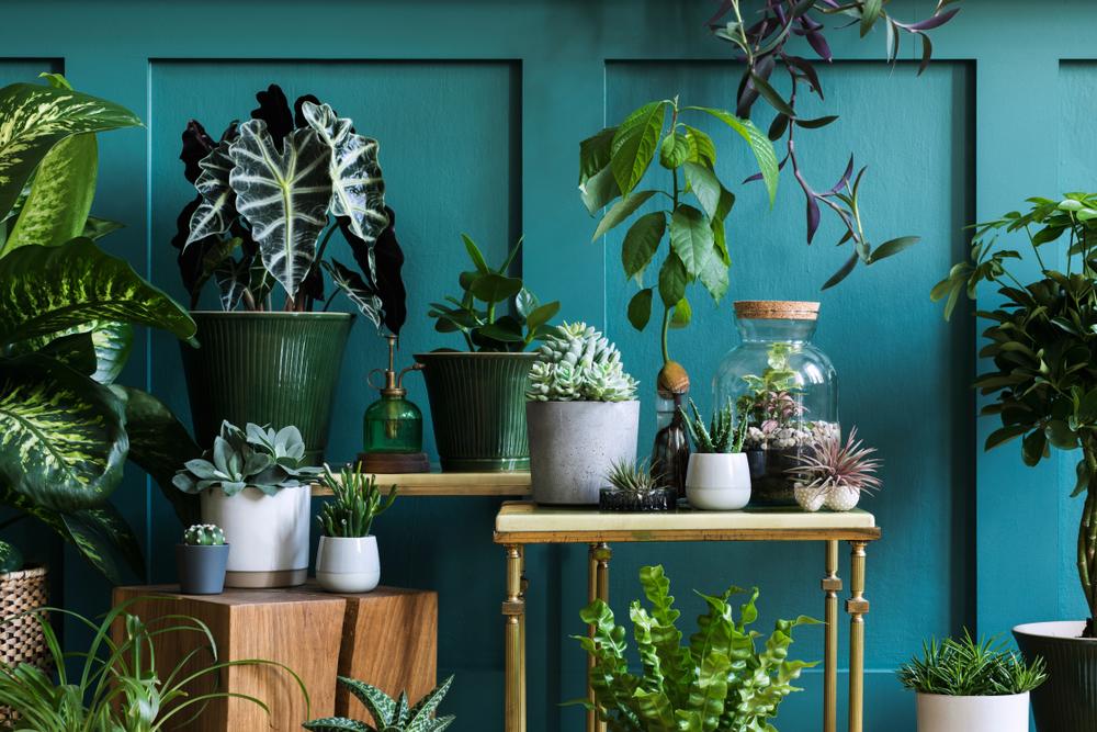 sustainable interior designs trends in Noida